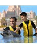 Nage avec les dauphins Dubai