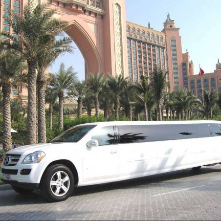 Visite Guidée Dubai Limousine (privative)