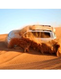 Royal Desert Safari & Diner