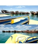 Tour en Speed Boat Abu Dhabi