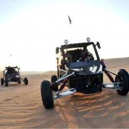 Excursion Buggy dans le désert