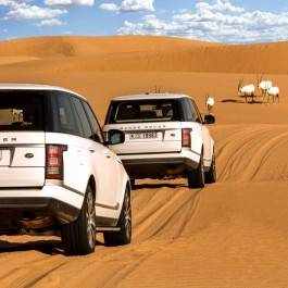 Luxury Desert Safari & Diner