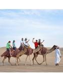 Safari Désert Fossil Rock Dubai