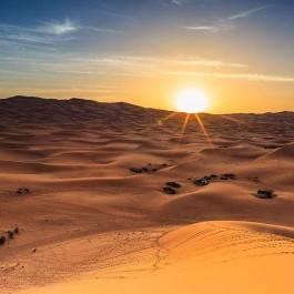 Excursion désert de Liwa - Abu Dhabi