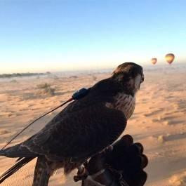 Tour en Montgolfière & petit-déjeuner dans le désert