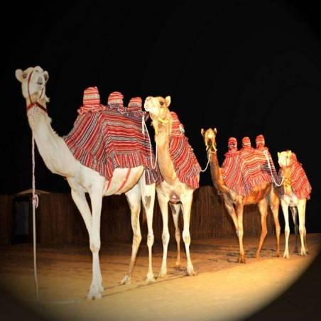 Royal Desert Safari & Diner