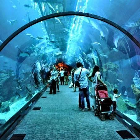 Visite Guidée Dubai Shopping